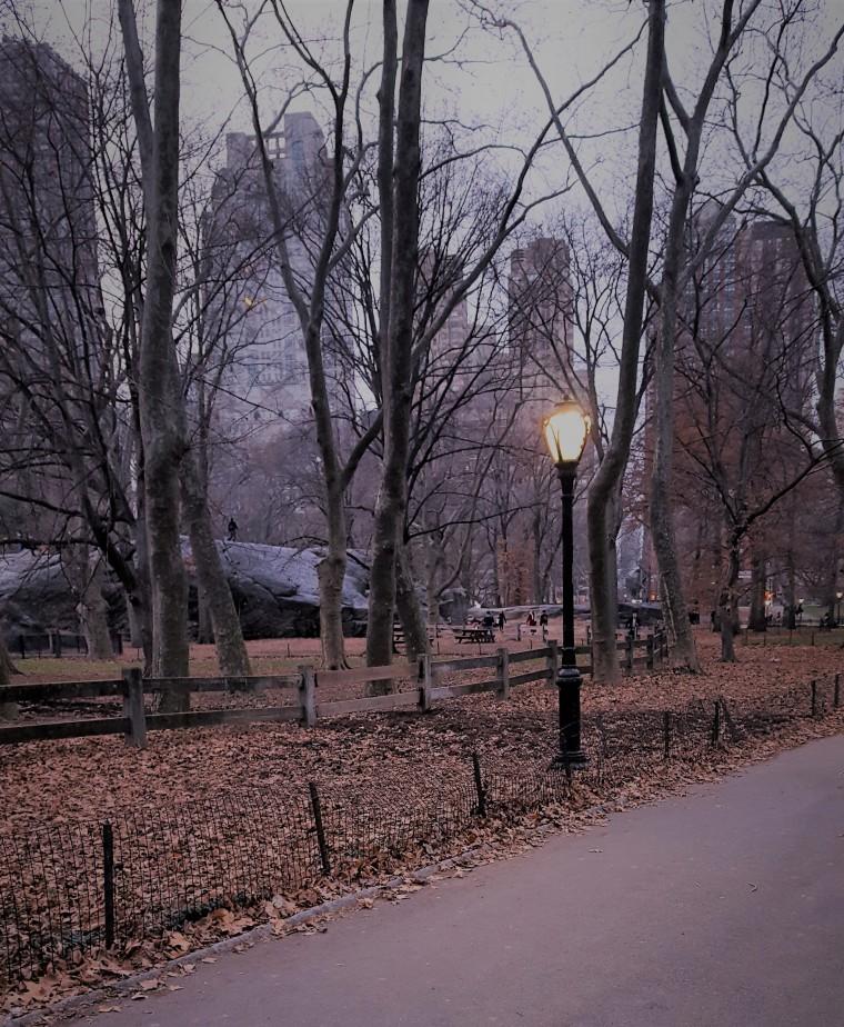 lamp-scene-copy