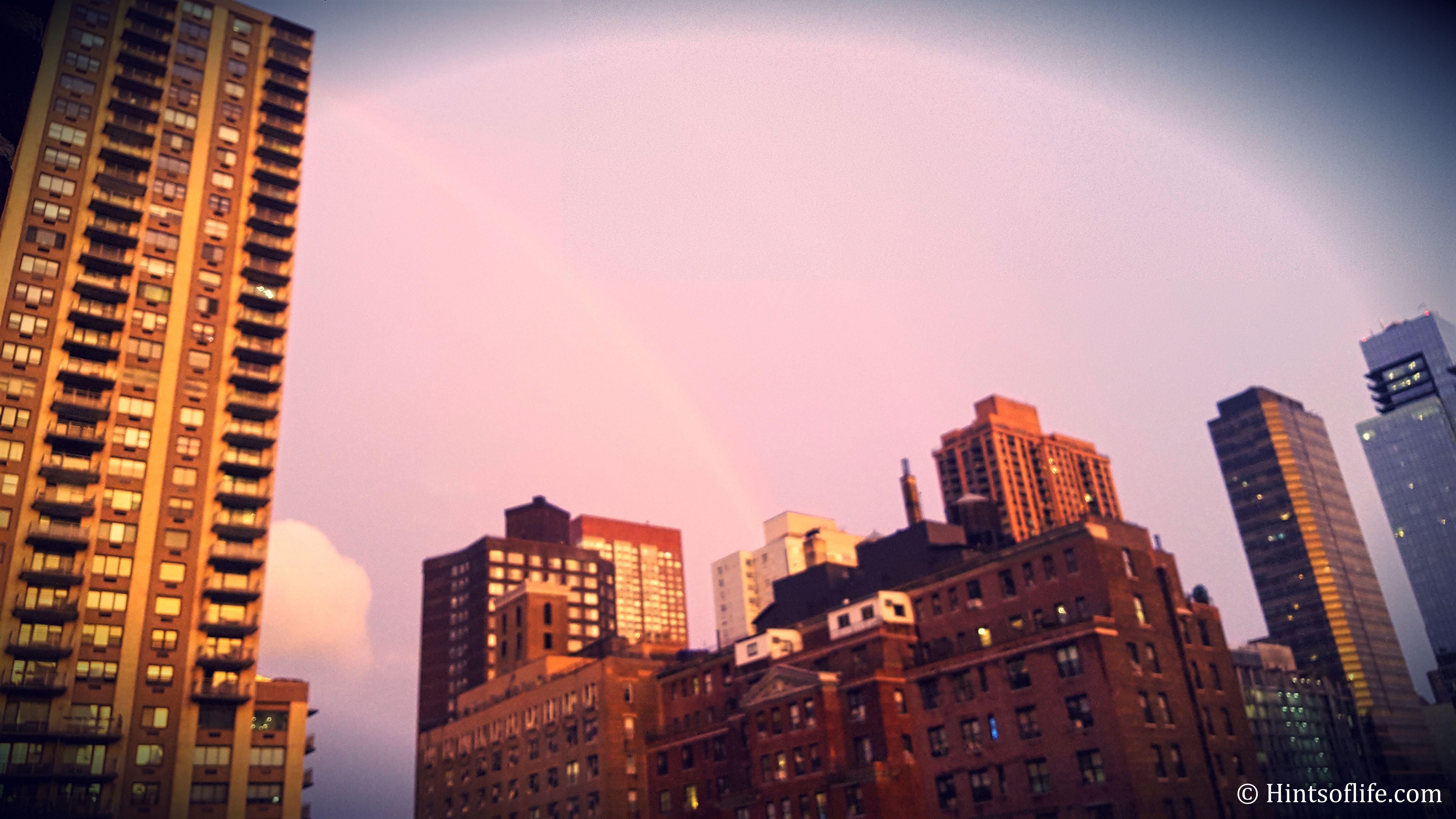 Calssic New York View