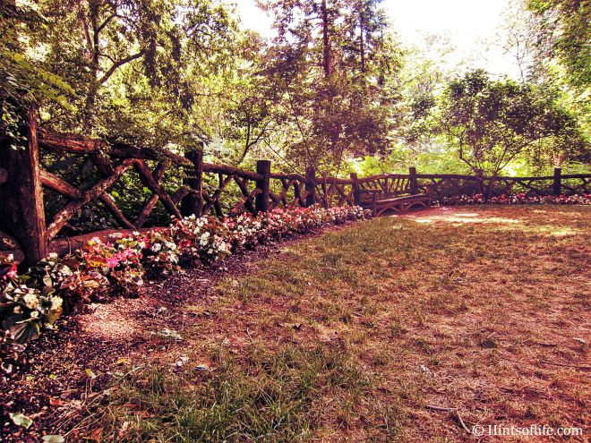Shakespeare Garden_3