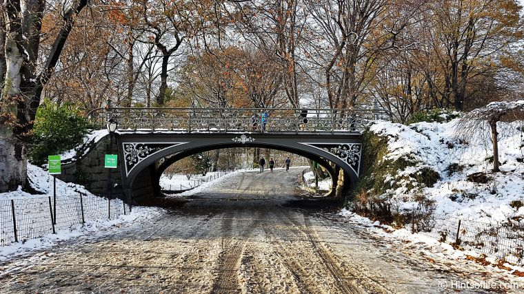 Central Park_First Snow_Winter