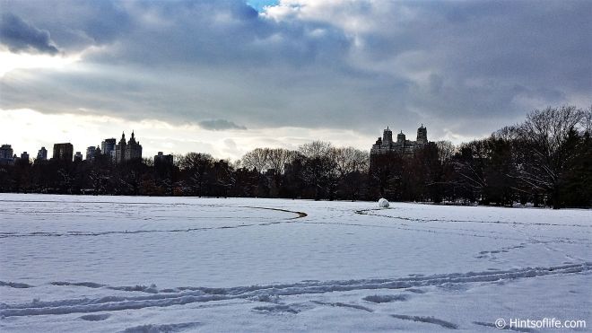 Central Park_First Snow_Winter..