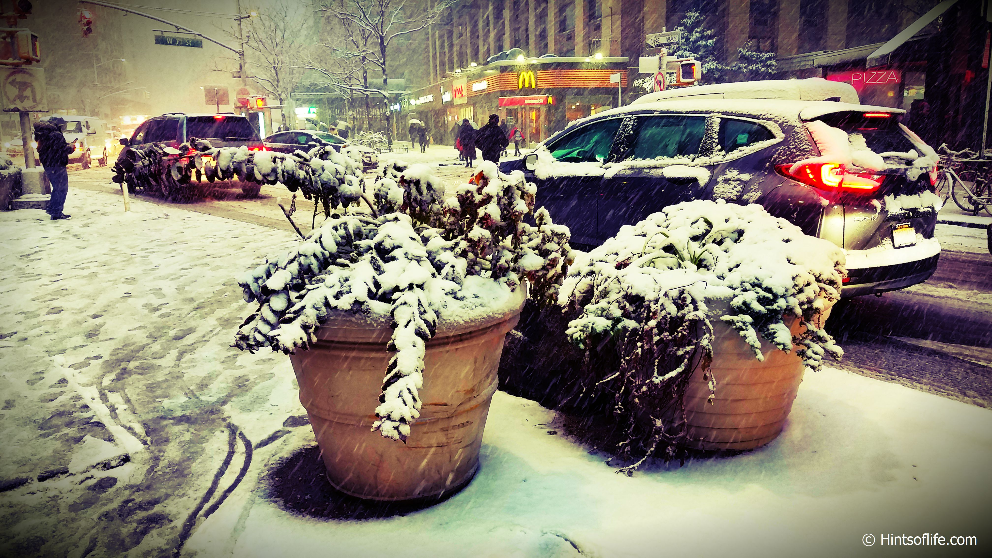 First Snow_New York Streets..
